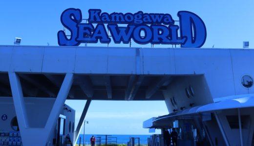 鴨川シーワールドの見どころ紹介!シャチとベルーガと癒しのクラゲ!?