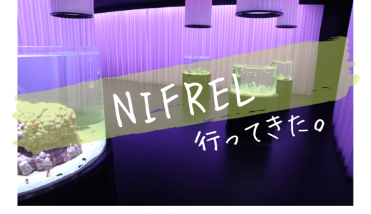 NIFRELに行ってきました【展示エリア別に写真や生き物を紹介】