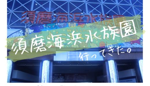 須磨海浜水族園に行ってきました【展示エリア別に写真や生き物を紹介】