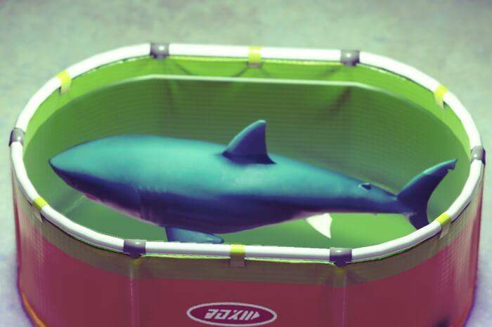 サメ【あつ森】