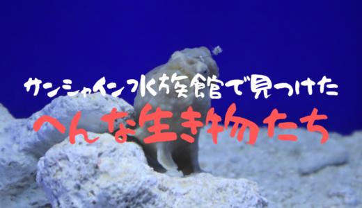 サンシャイン水族館で見つけたへんな生き物たち【5選】