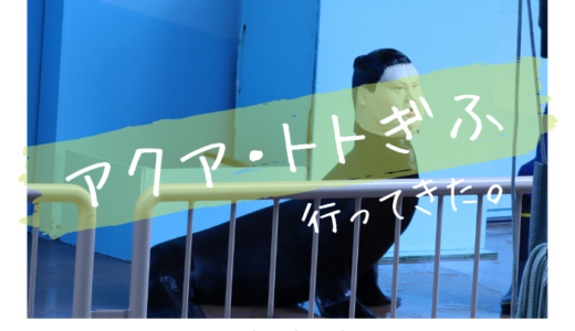 アクア・トトぎふに行ってきました【展示エリア別に写真や生き物を紹介】
