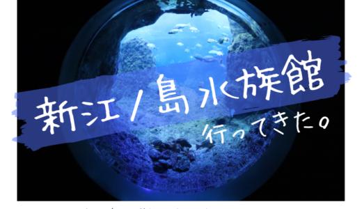 新江ノ島水族館に行ってきました【展示エリア別に写真や生き物を紹介】