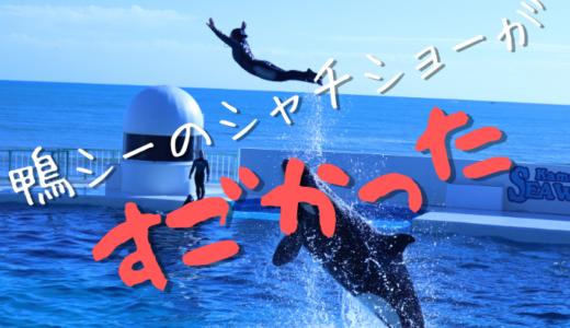 鴨川シーワールドのシャチショーが想像以上にすごかった【見分け方など】