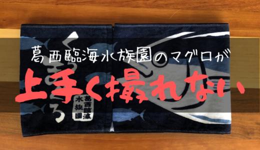 【葛西臨海水族園】マグロの泳ぎが速すぎて写真が上手く撮れない話
