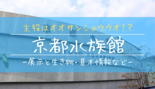 京都水族館の見どころを徹底解説!主役はオオサンショウウオ!?