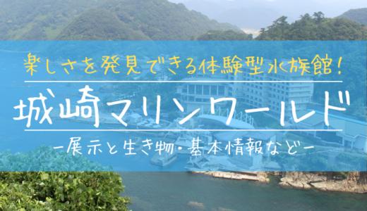 楽しさを発見できる体験型水族館!城崎マリンワールドの見どころを徹底解説
