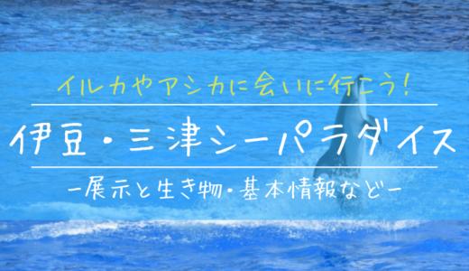 イルカやアシカに会いに行こう!伊豆・三津シーパラダイスの見どころを徹底解説