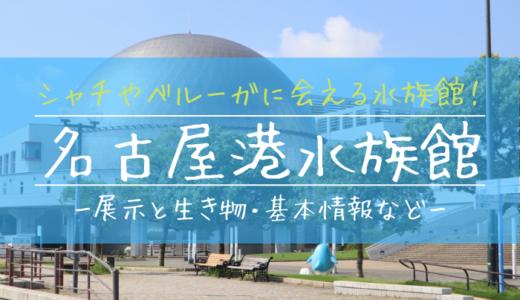 シャチやベルーガに会える水族館!名古屋港水族館の見どころを徹底解説