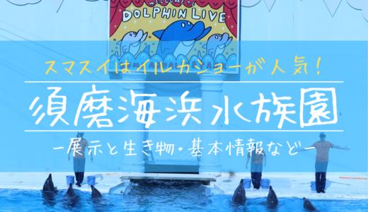 スマスイはイルカショーが人気!須磨海浜水族園の見どころを徹底解説