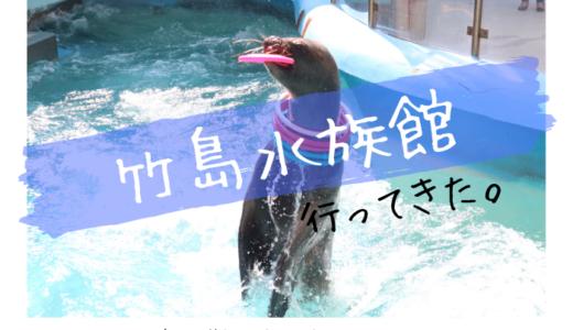 竹島水族館に行ってきました【注目ポイントや生き物を写真で紹介】
