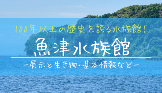 魚津水族館の見どころを徹底解説!100年以上の歴史を誇る最古の水族館